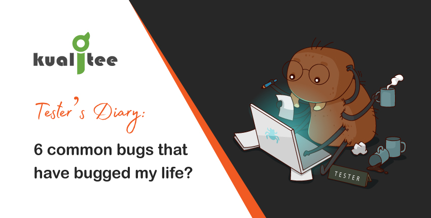 Tester's Diary 6 common bugs